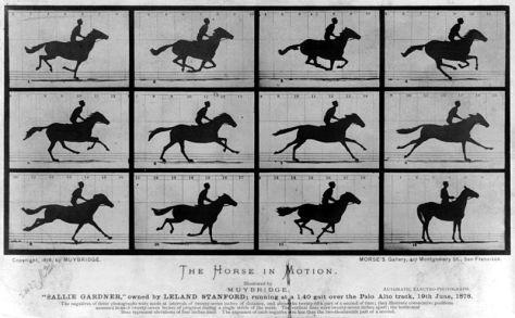"""Serie de fotografías """"El caballo en movimiento"""" presentada en 1878."""